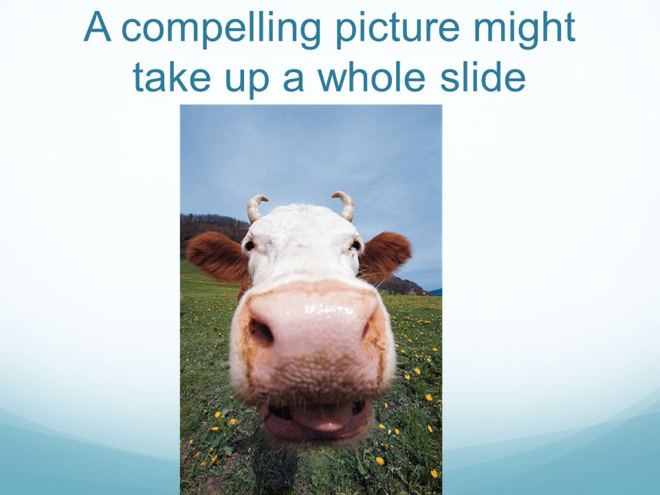 A compelling picture might take up a whole slide