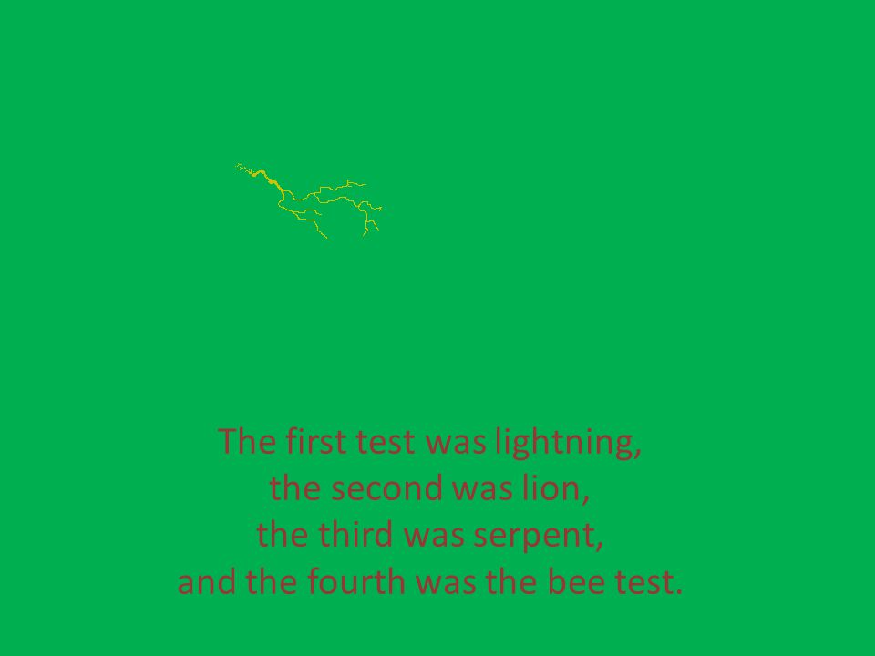 The first test was lightning, the second was lion, the third was serpent, and the fourth was the bee test.