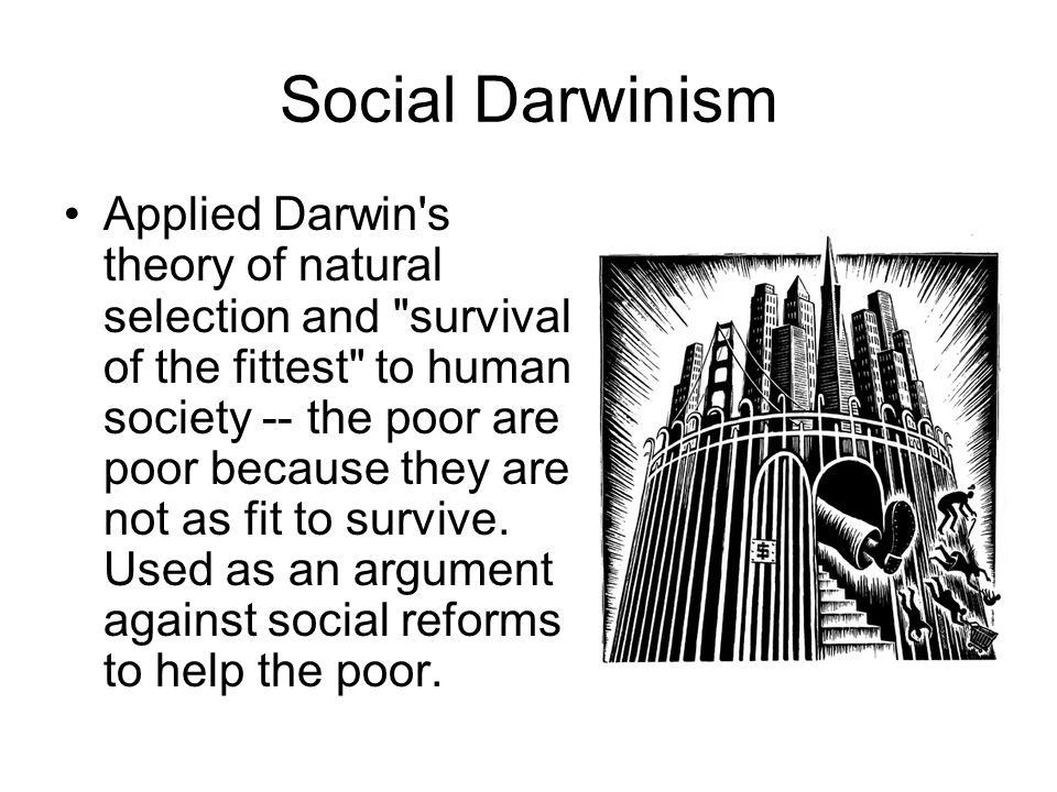 a history of darwinism in the american society They're still serious about social darwinism  paul ryan has had me thinking  about the place of social darwinism in american politics ryan  forgotten man,  compelled by misguided humanitarians to aid society's failures  about both the  historical and contemporary resistance to social darwinist ideas.