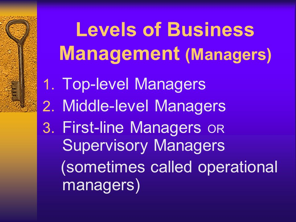 Levels of Business Management (Managers)