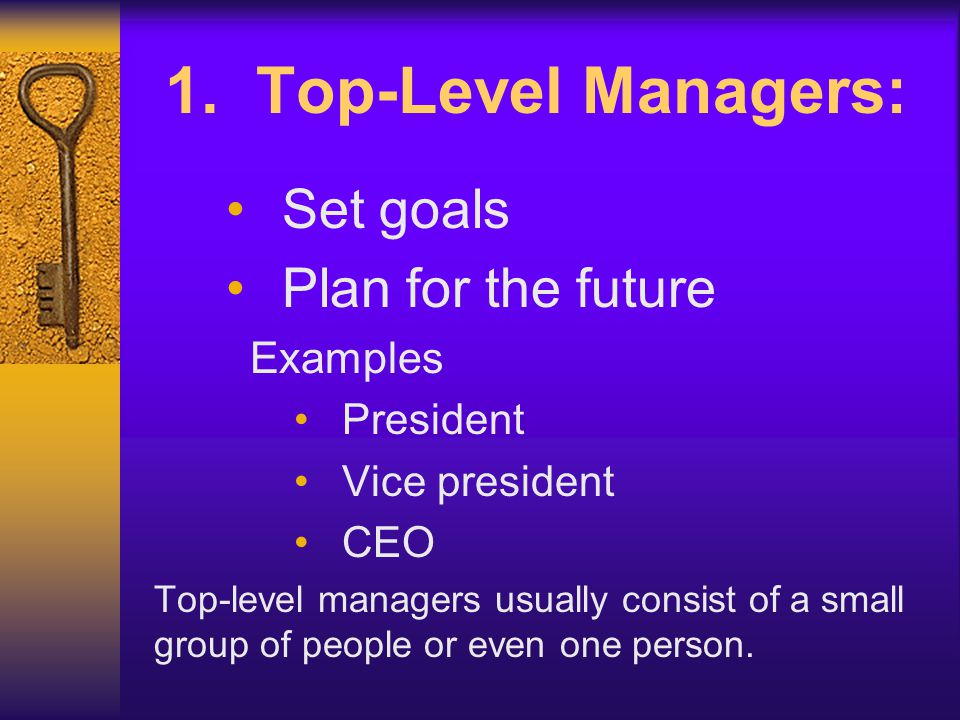 1. Top-Level Managers: Set goals Plan for the future Examples