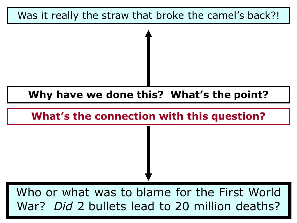 Was it really the straw that broke the camel's back !