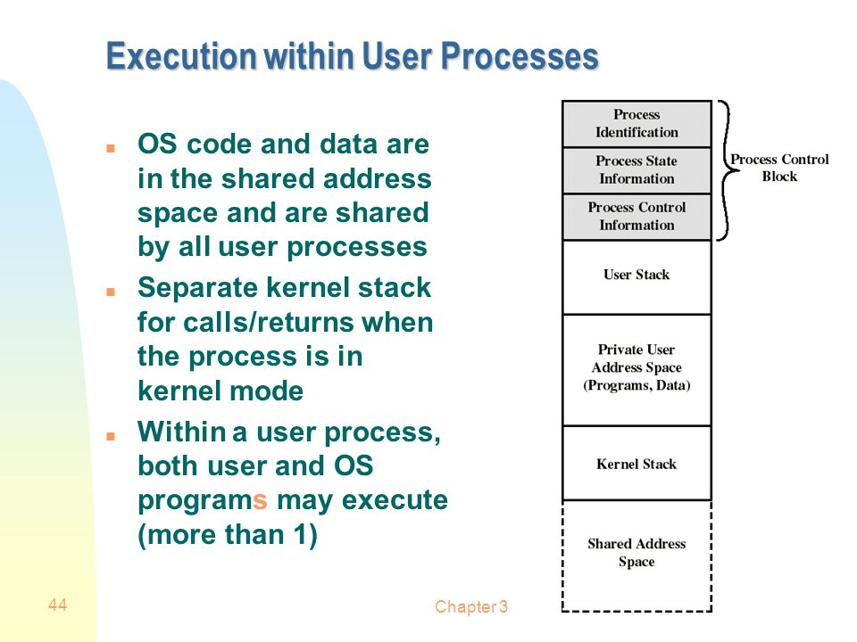 Execution within User Processes