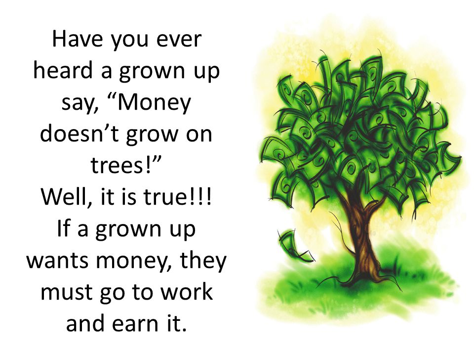 Have you ever heard a grown up say, Money doesn't grow on trees