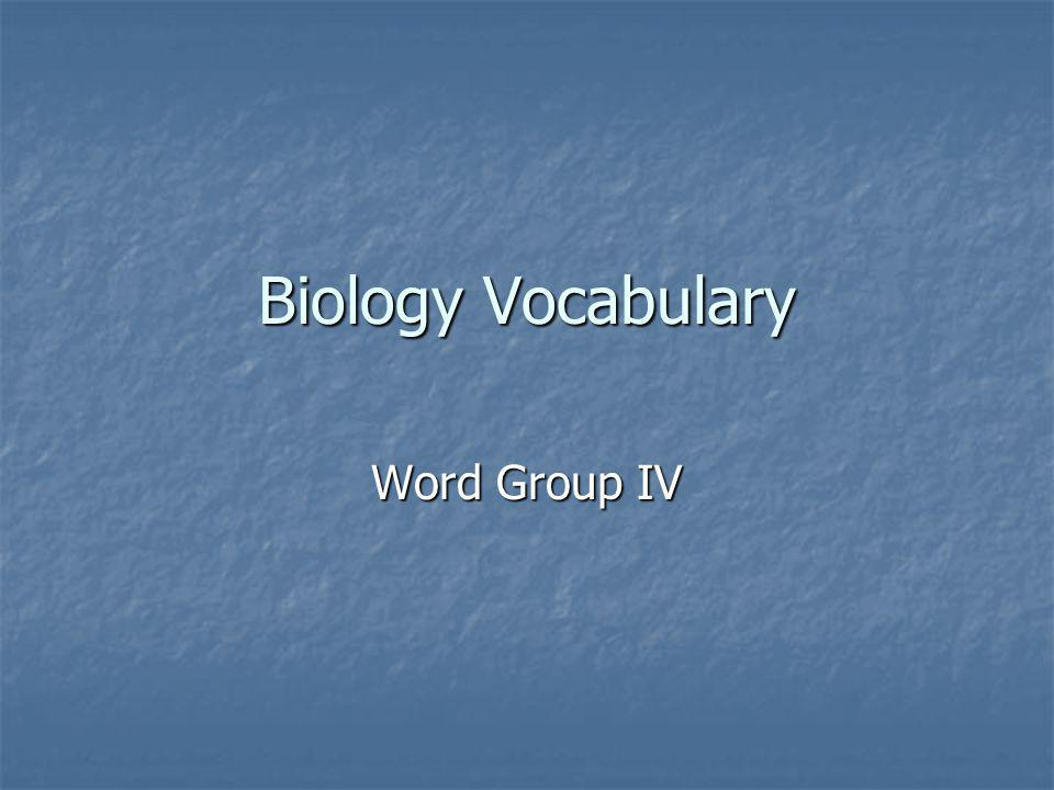 Biology Vocabulary Word Group IV