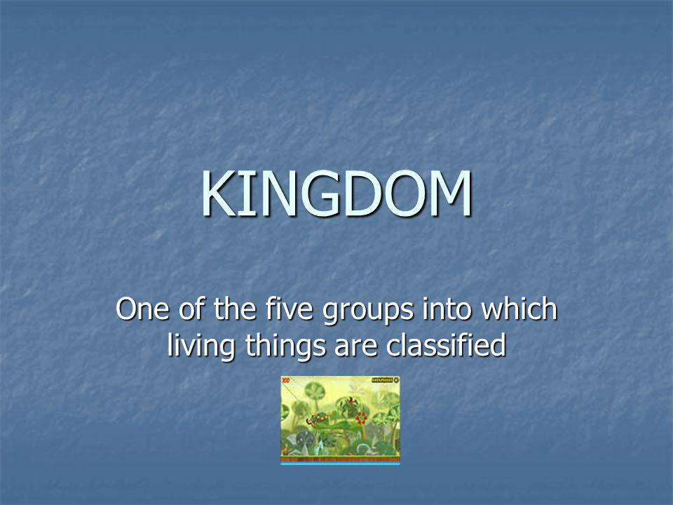 One of the five groups into which living things are classified