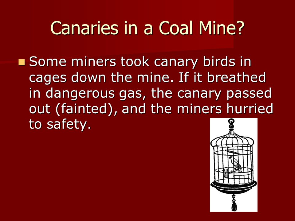 Canaries in a Coal Mine