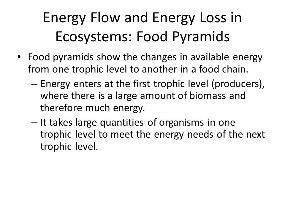 Energy Flow and Energy Loss in Ecosystems: Food Pyramids