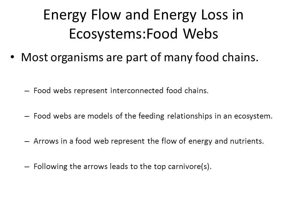 Energy Flow and Energy Loss in Ecosystems:Food Webs