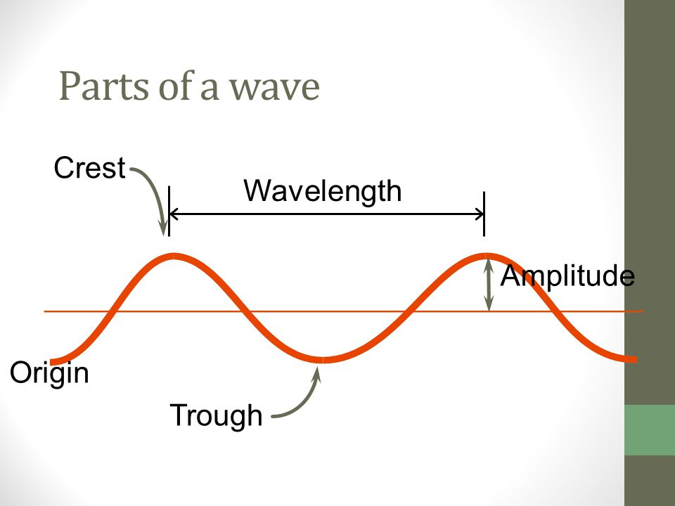 Parts of a wave Crest Wavelength Amplitude Origin Trough
