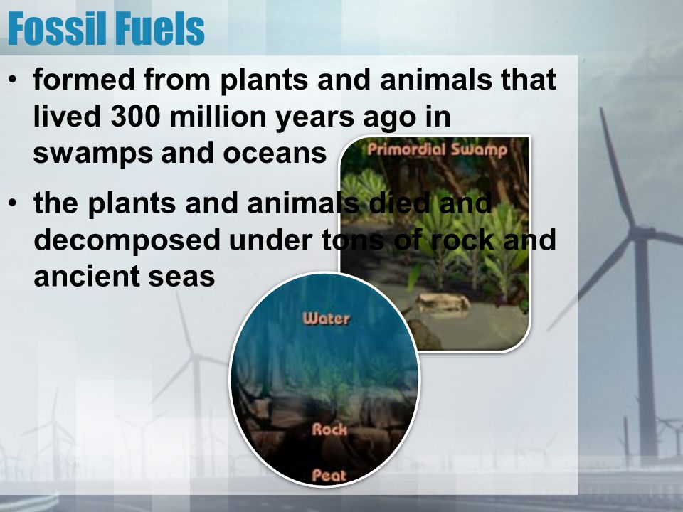 Fossil Fuels formed from plants and animals that lived 300 million years ago in swamps and oceans.
