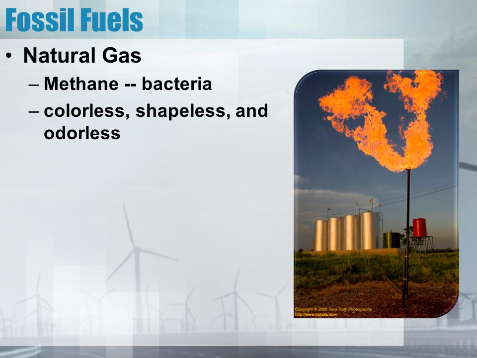 Fossil Fuels Natural Gas Methane -- bacteria
