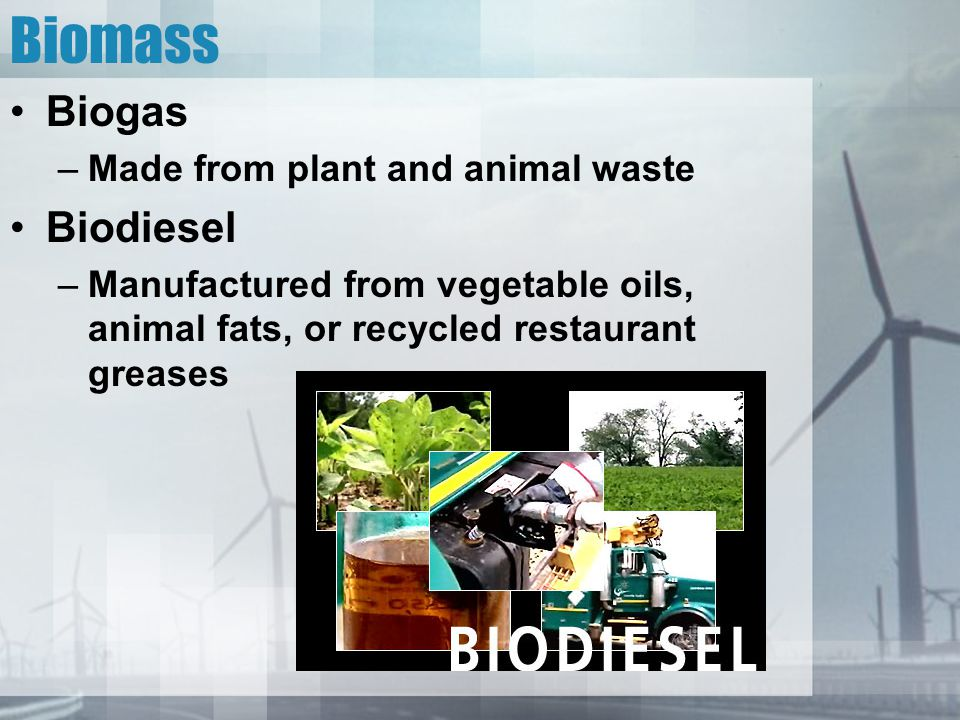 Biomass Biogas Biodiesel Made from plant and animal waste