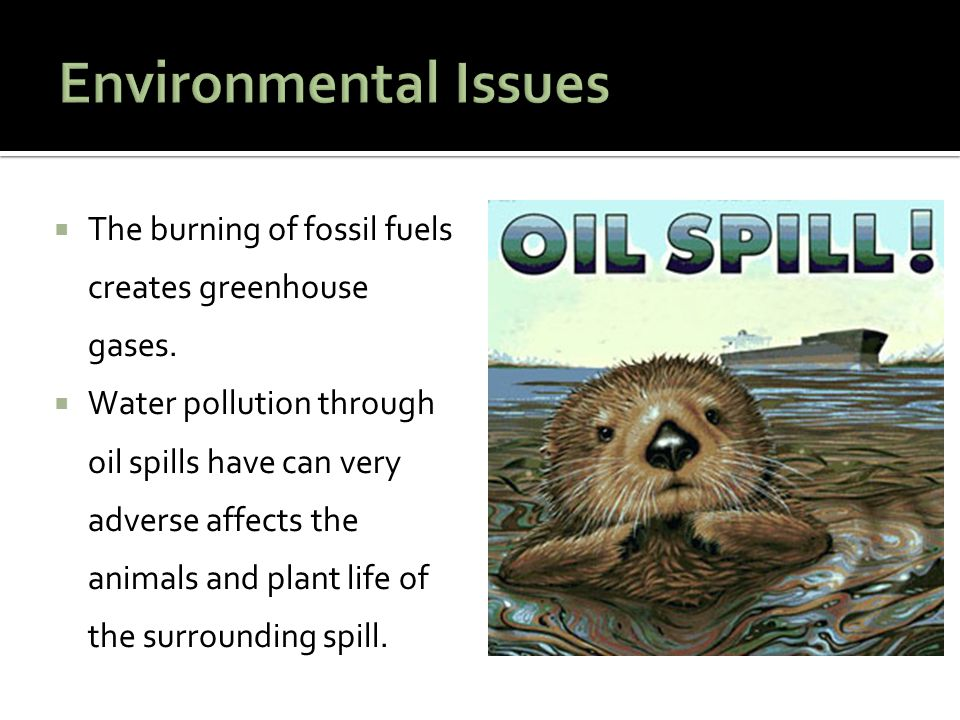Environmental Issues The burning of fossil fuels creates greenhouse gases.