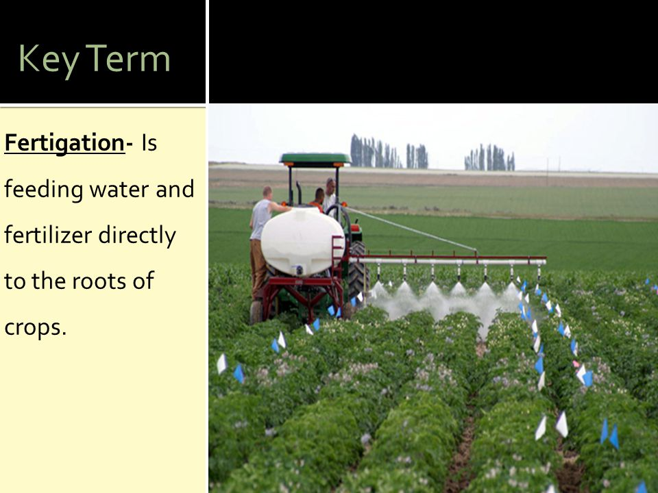Key Term Fertigation- Is feeding water and fertilizer directly to the roots of crops.