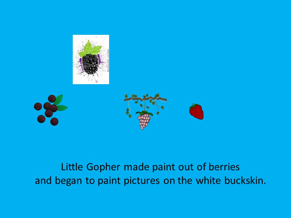Little Gopher made paint out of berries and began to paint pictures on the white buckskin.