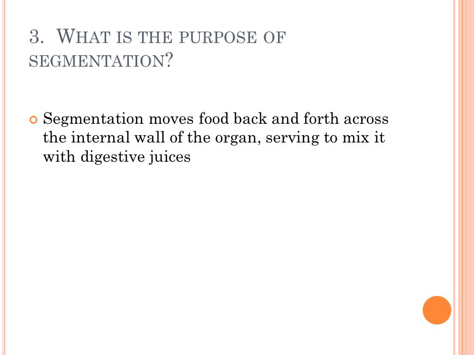 3. What is the purpose of segmentation