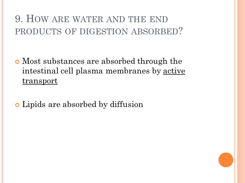 9. How are water and the end products of digestion absorbed