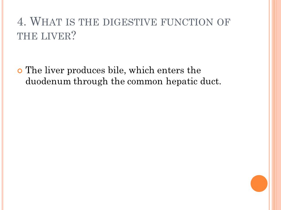 4. What is the digestive function of the liver