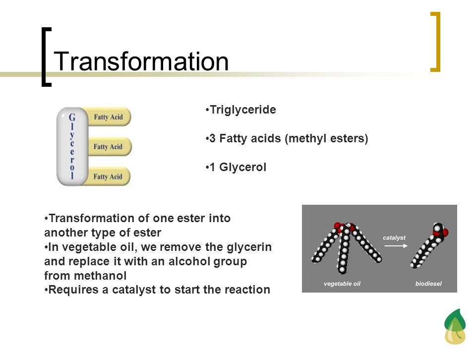 Transformation Triglyceride 3 Fatty acids (methyl esters) 1 Glycerol