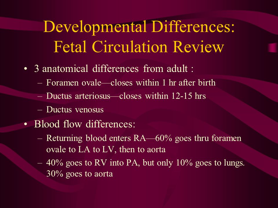 Developmental Differences: Fetal Circulation Review