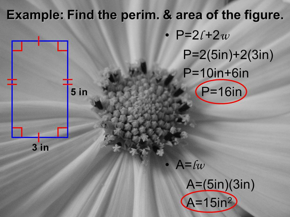 Example: Find the perim. & area of the figure.
