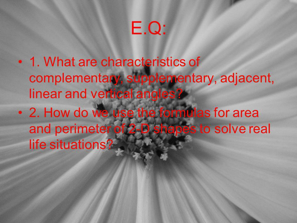 E.Q: 1. What are characteristics of complementary, supplementary, adjacent, linear and vertical angles