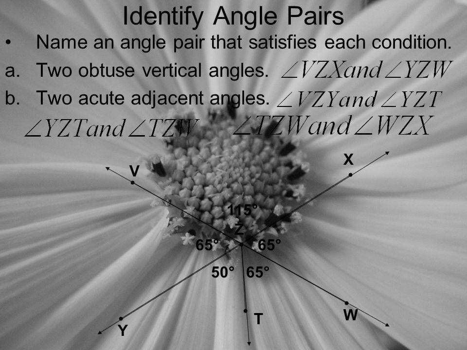 Identify Angle Pairs Name an angle pair that satisfies each condition.