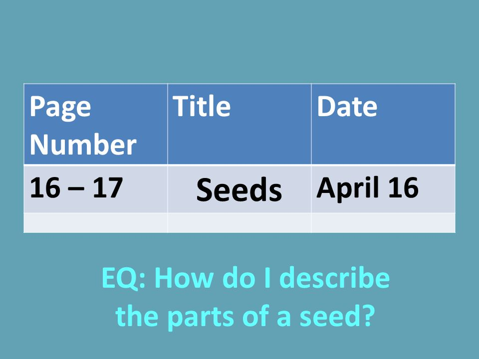 EQ: How do I describe the parts of a seed
