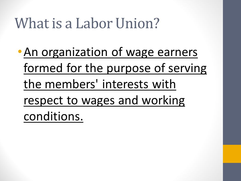 What is a Labor Union