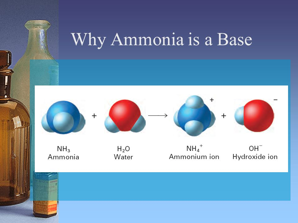 Why Ammonia is a Base