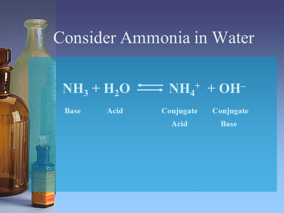 Consider Ammonia in Water