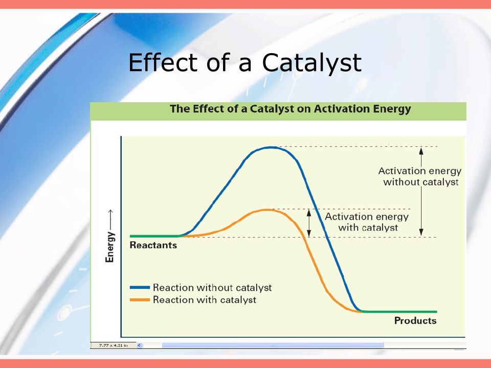 Effect of a Catalyst