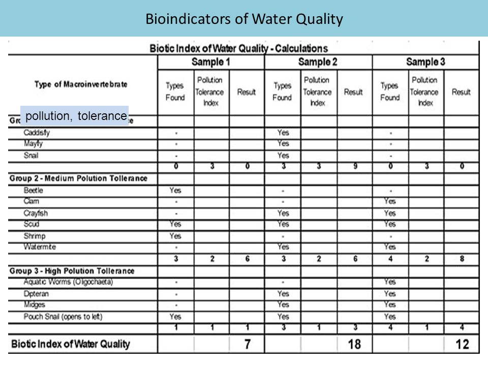 Bioindicators of Water Quality