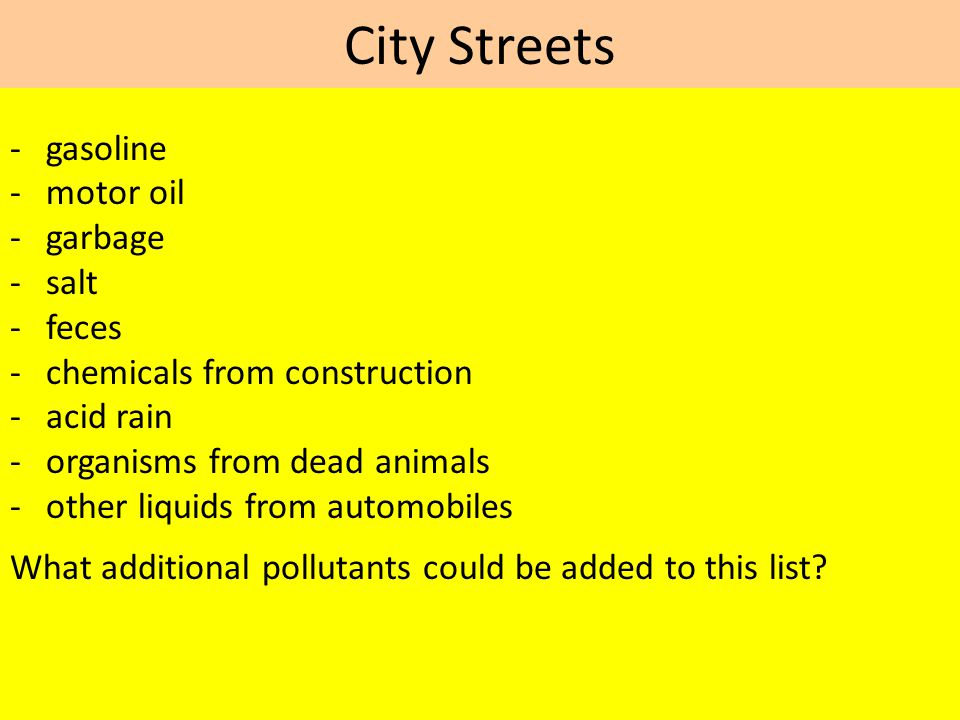 City Streets - gasoline - motor oil - garbage - salt - feces