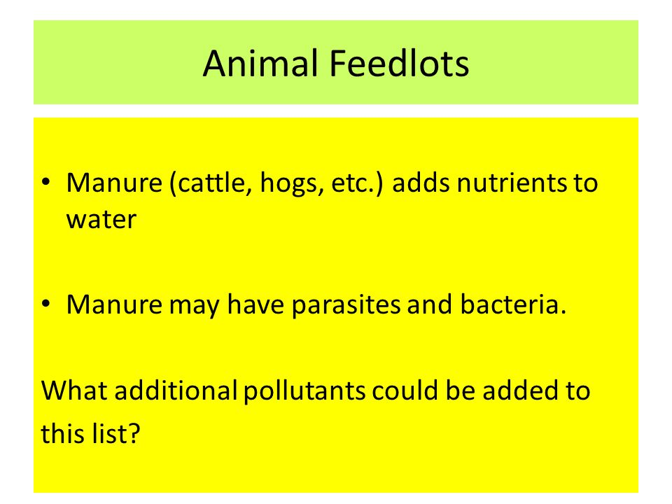 Animal Feedlots Manure (cattle, hogs, etc.) adds nutrients to water