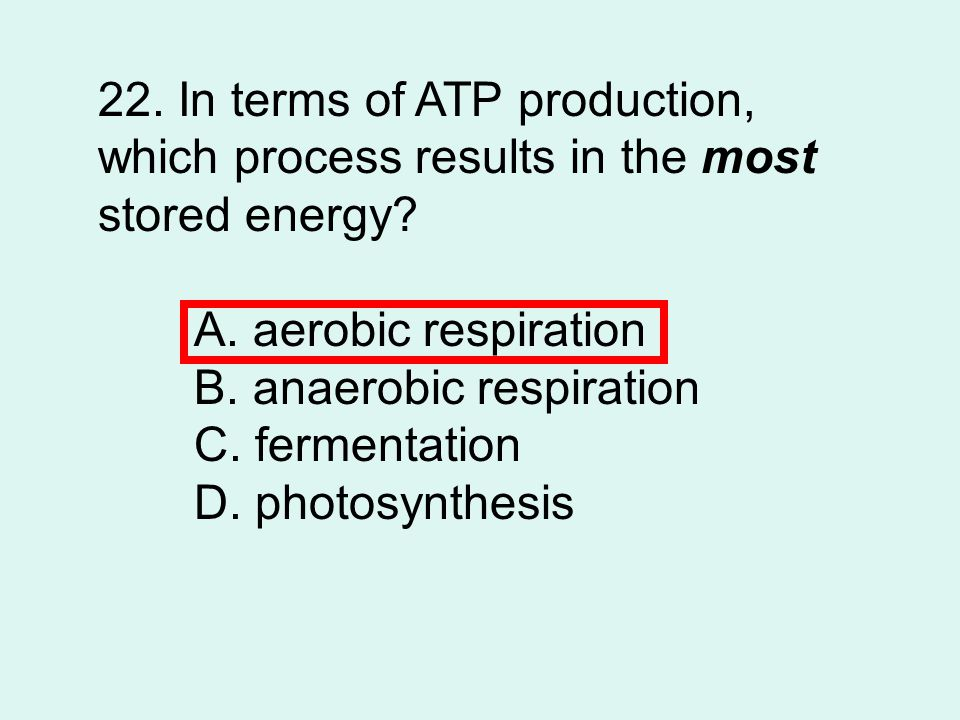 22. In terms of ATP production, which process results in the most stored energy