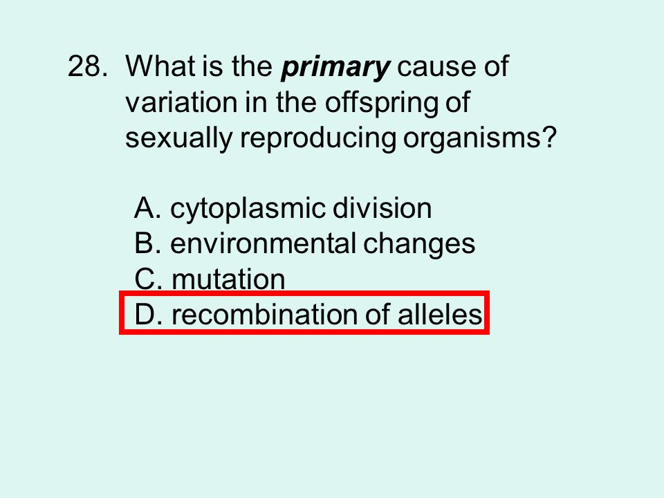 28. What is the primary cause of
