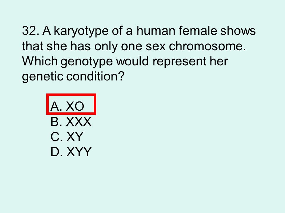 32. A karyotype of a human female shows
