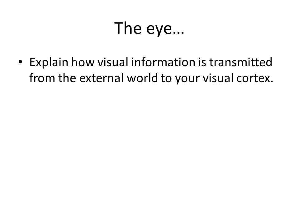 The eye… Explain how visual information is transmitted from the external world to your visual cortex.