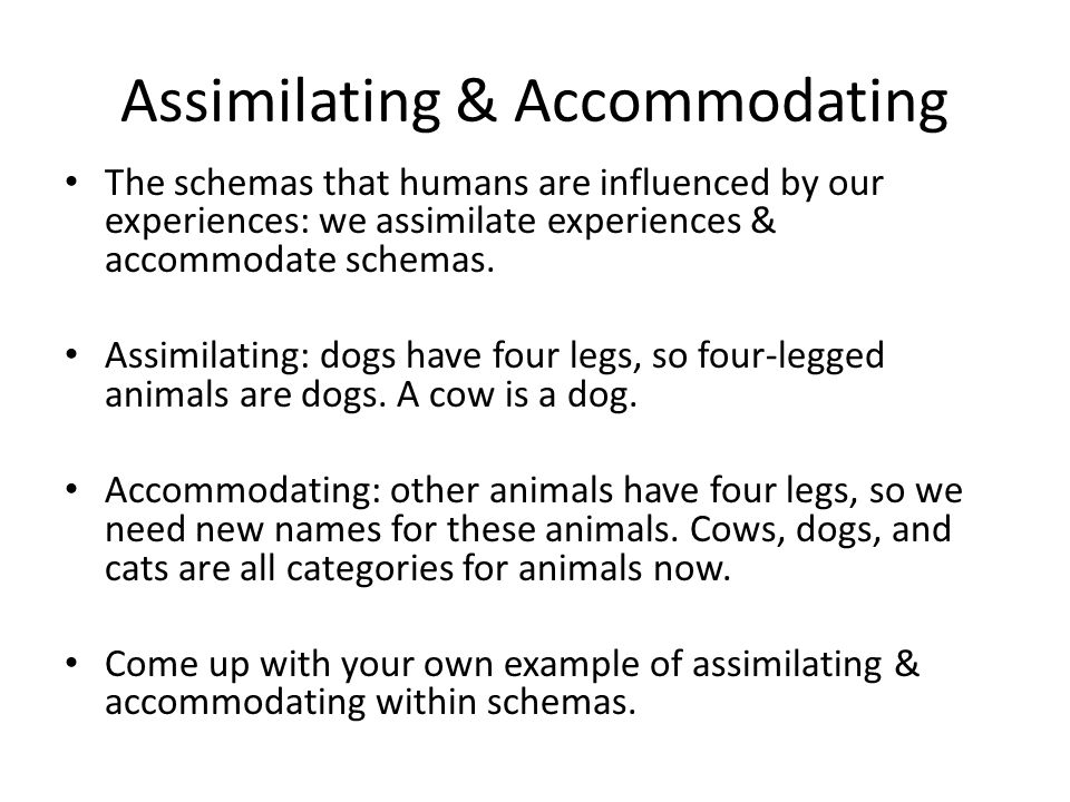 Assimilating & Accommodating