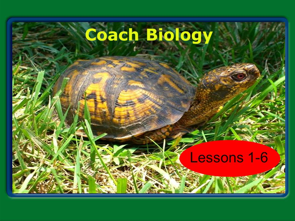 Coach Biology Chapter 1 Lessons 1-6