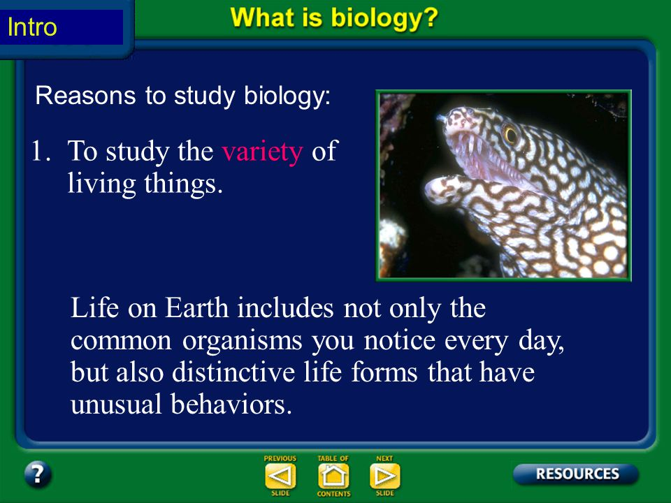 To study the variety of living things.