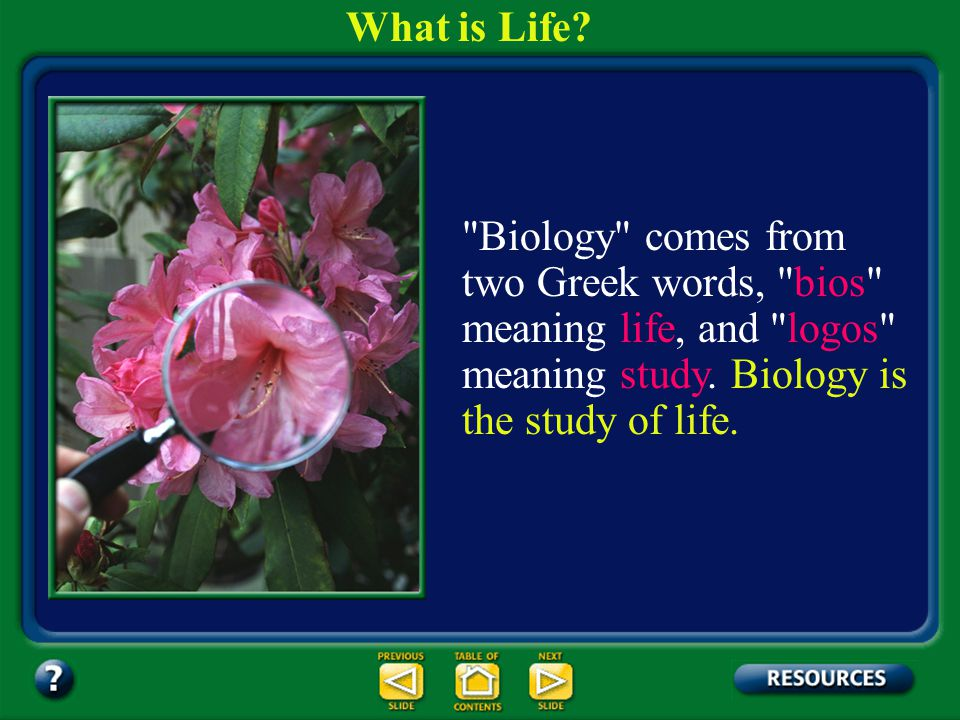 What is Life Biology comes from two Greek words, bios meaning life, and logos meaning study. Biology is the study of life.