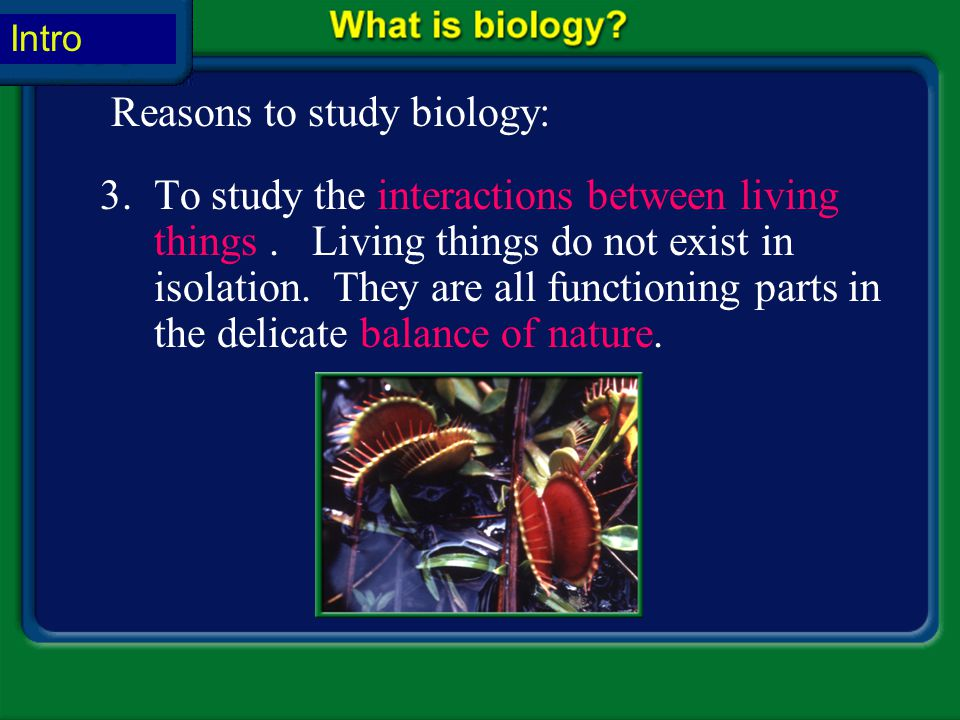 Reasons to study biology: