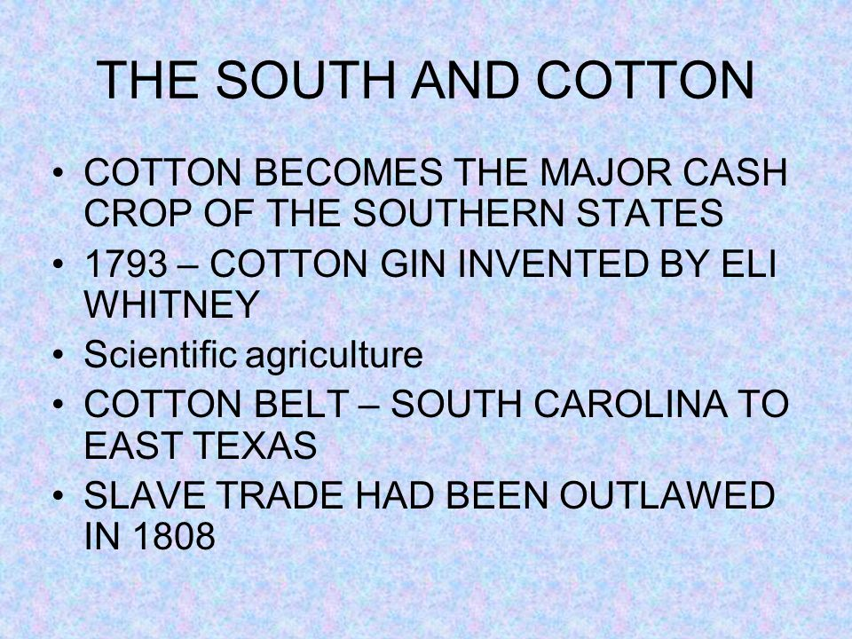 THE SOUTH AND COTTON COTTON BECOMES THE MAJOR CASH CROP OF THE SOUTHERN STATES. 1793 – COTTON GIN INVENTED BY ELI WHITNEY.
