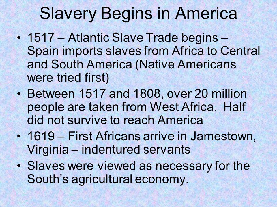Slavery Begins in America