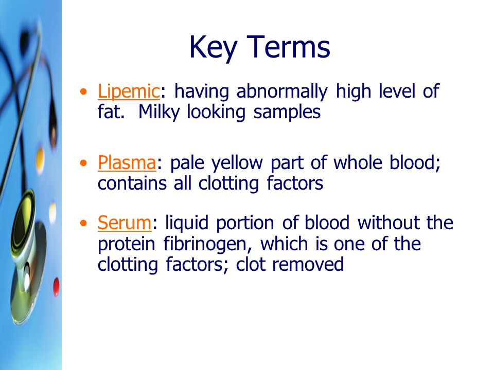 Key Terms Lipemic: having abnormally high level of fat. Milky looking samples.