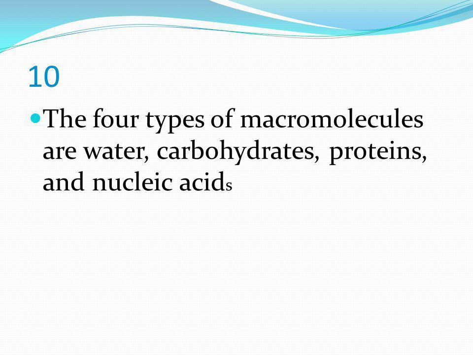 10 The four types of macromolecules are water, carbohydrates, proteins, and nucleic acids
