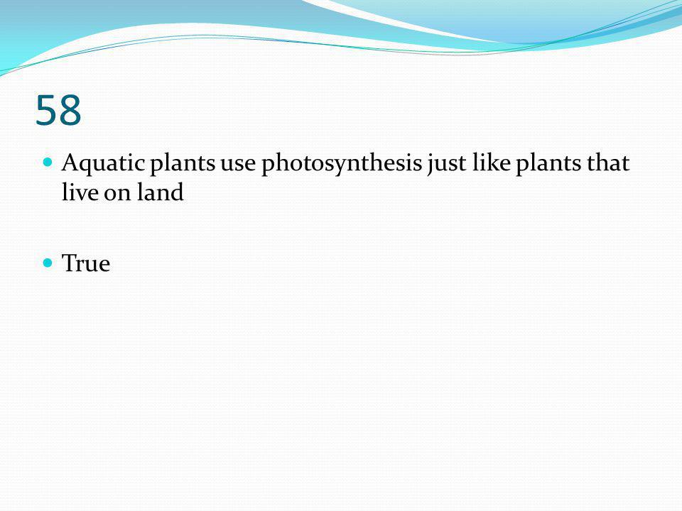 58 Aquatic plants use photosynthesis just like plants that live on land True